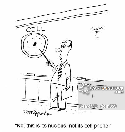 'No, this is its nucleus, not its cell phone.'